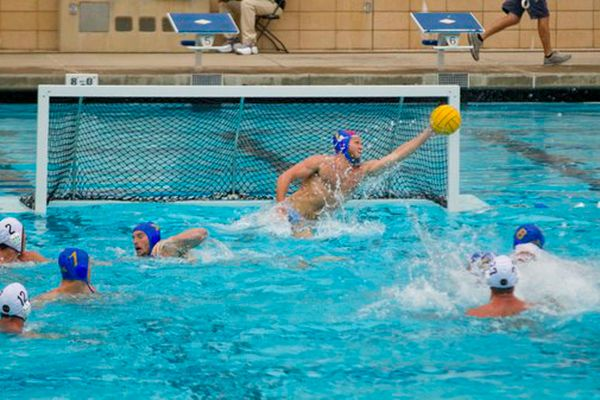 Ucla Men' Water Polo Tournament Time - Bruins Nation