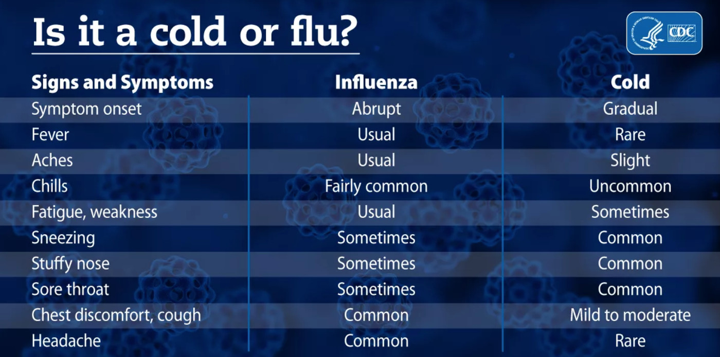 Flu vaccine 2019: the vaccine is working well this year ...
