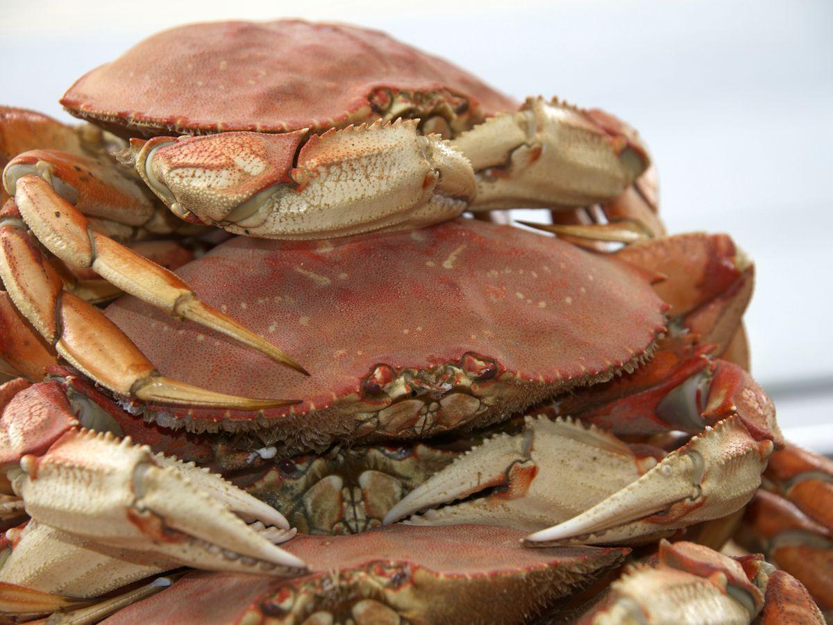 Best Fresh Seafood San Francisco
