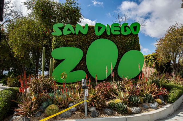 A photo outside the San Diego Zoo on a sunny day. The sign for the zoo has its name in big green letters.