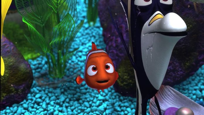 clownfish Nemo in a fish tank next to Gill