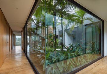 garden tropical modern brazilian courtyard interior plants indoor glass guerra around winter window open internal brazil patio david walls secret