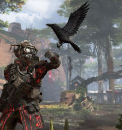 a soldier named bloodhound looks to his raven in a screenshot from apex legends  [ 1200 x 800 Pixel ]