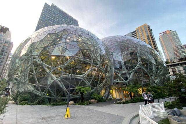 Amazon's Spheres