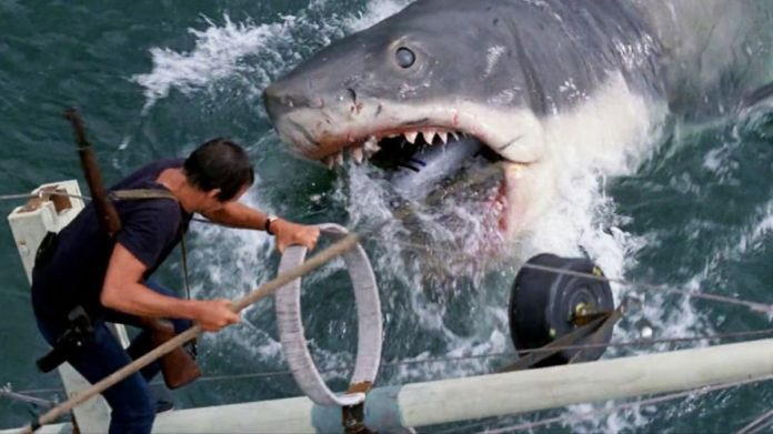 A super big-ass shark tries to eat Roy Scheider in Jaws.