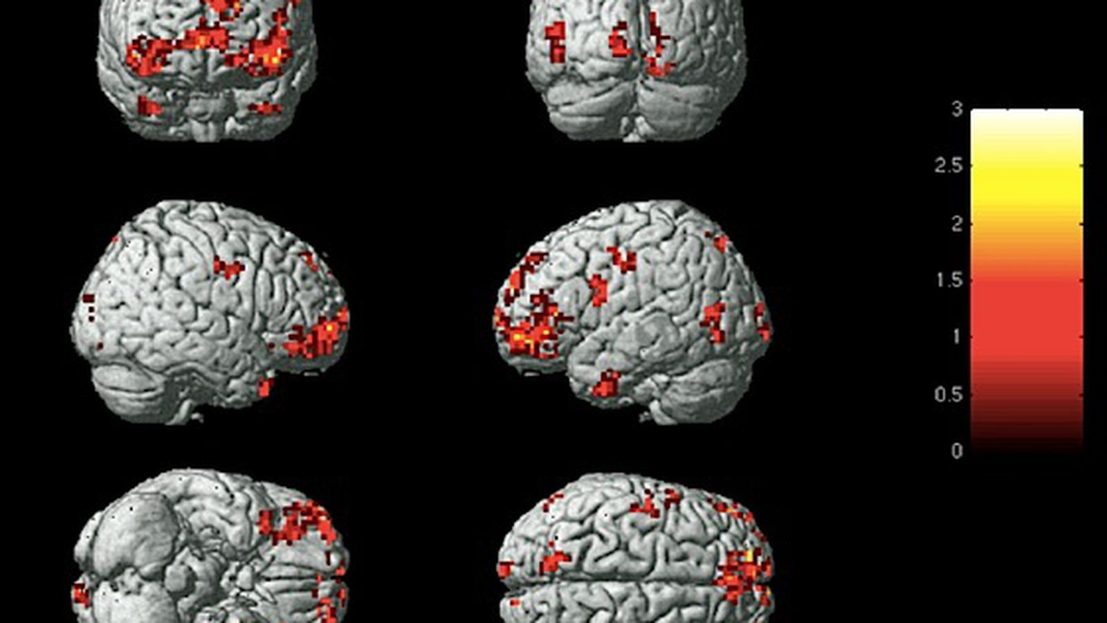 For The First Time Scientists Can Identify Your Emotions Based On Brain Activity The Verge