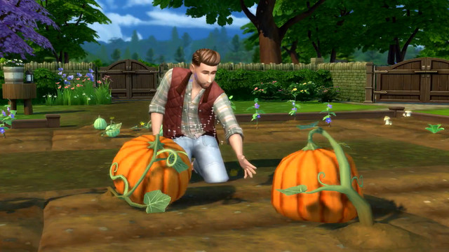Screenshot__290_.0 The Sims 4's Cottage Living pack adds farming, llamas   Polygon