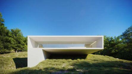 Minimalist Modern Architecture