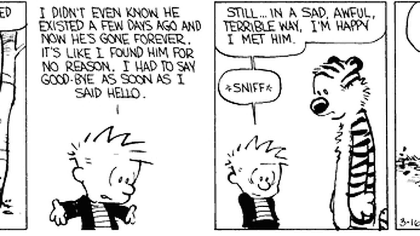 25 Great Calvin and Hobbes Strips  Progressive Boink