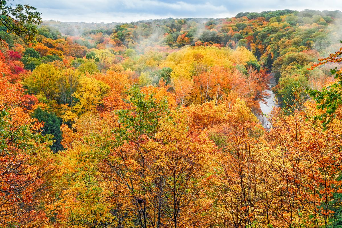 Maine Fall Foliage Wallpaper Where To See Fall Colors 11 Best National Parks To Visit