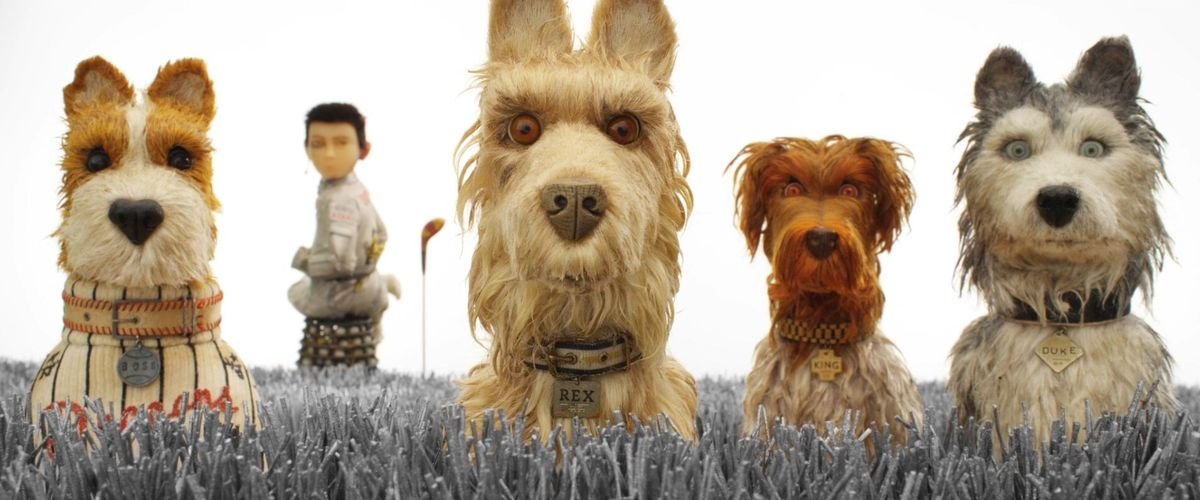 Isle of Dogs: Four dogs look straight at camera