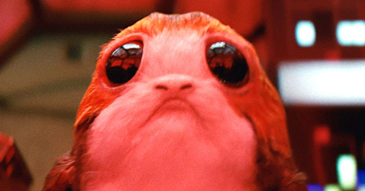 Animal Love Wallpaper Science Can Explain Why You Want To Eat A Porg The Verge