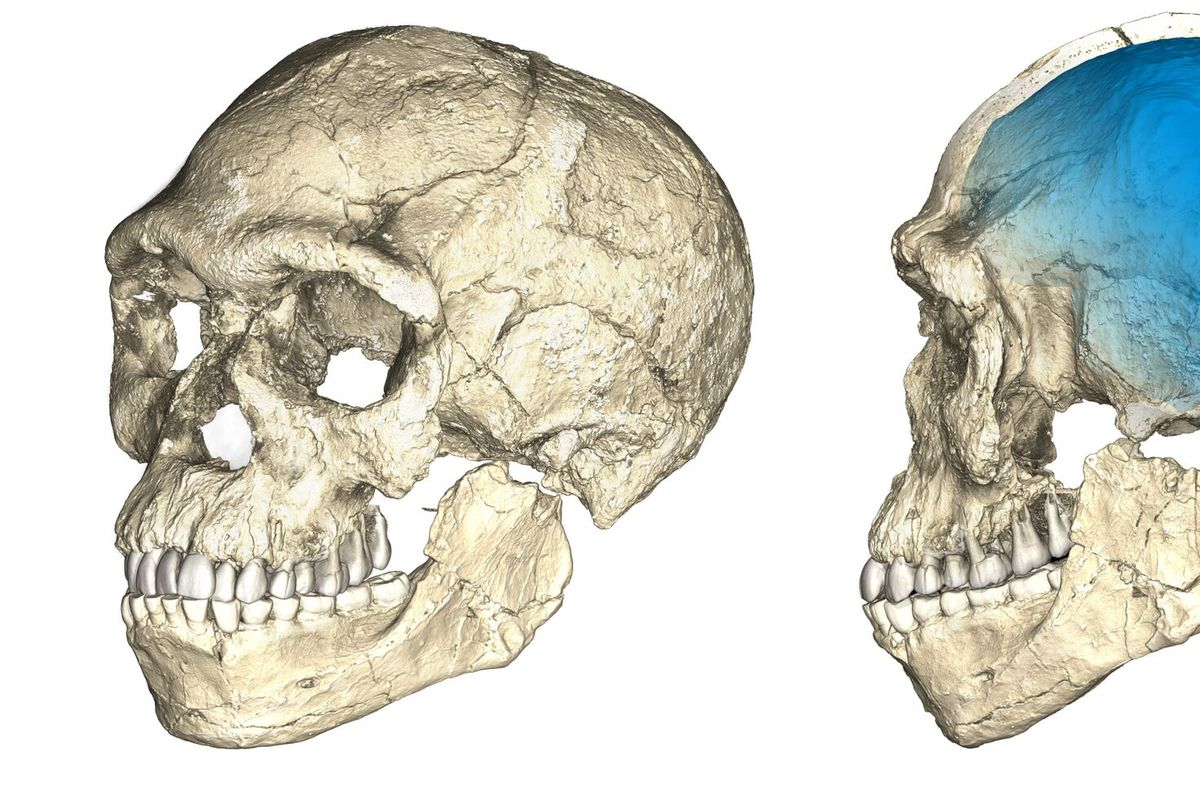 The Story Of Human Evolution In Africa Is Undergoing A