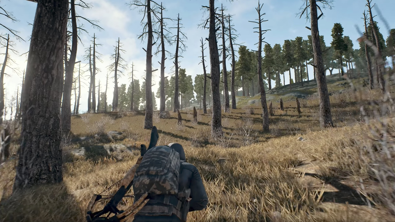 PlayerUnknowns Battlegrounds Is Coming As A Console Launch Exclusive On Xbox One The Verge