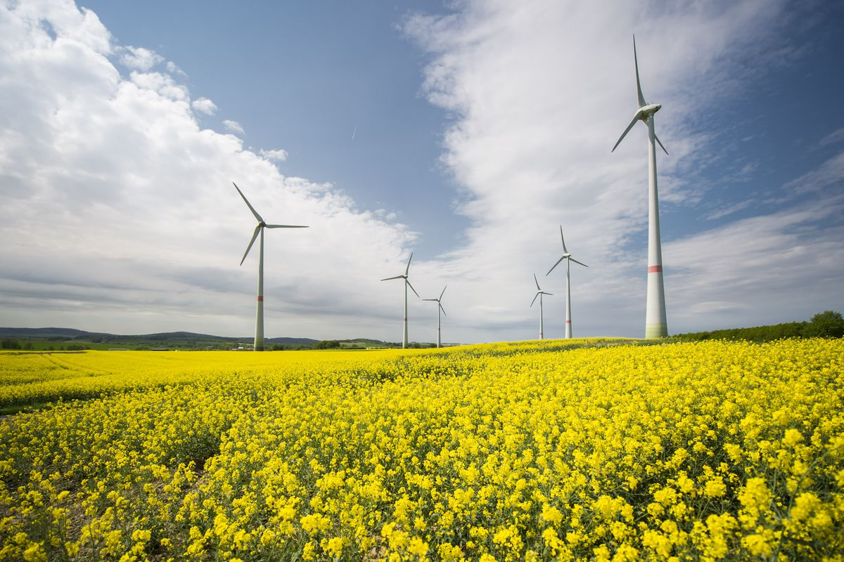 Wind And Solar Are Thriving In Europe