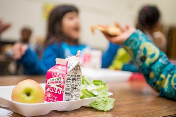Kids School Lunch Junk-Food