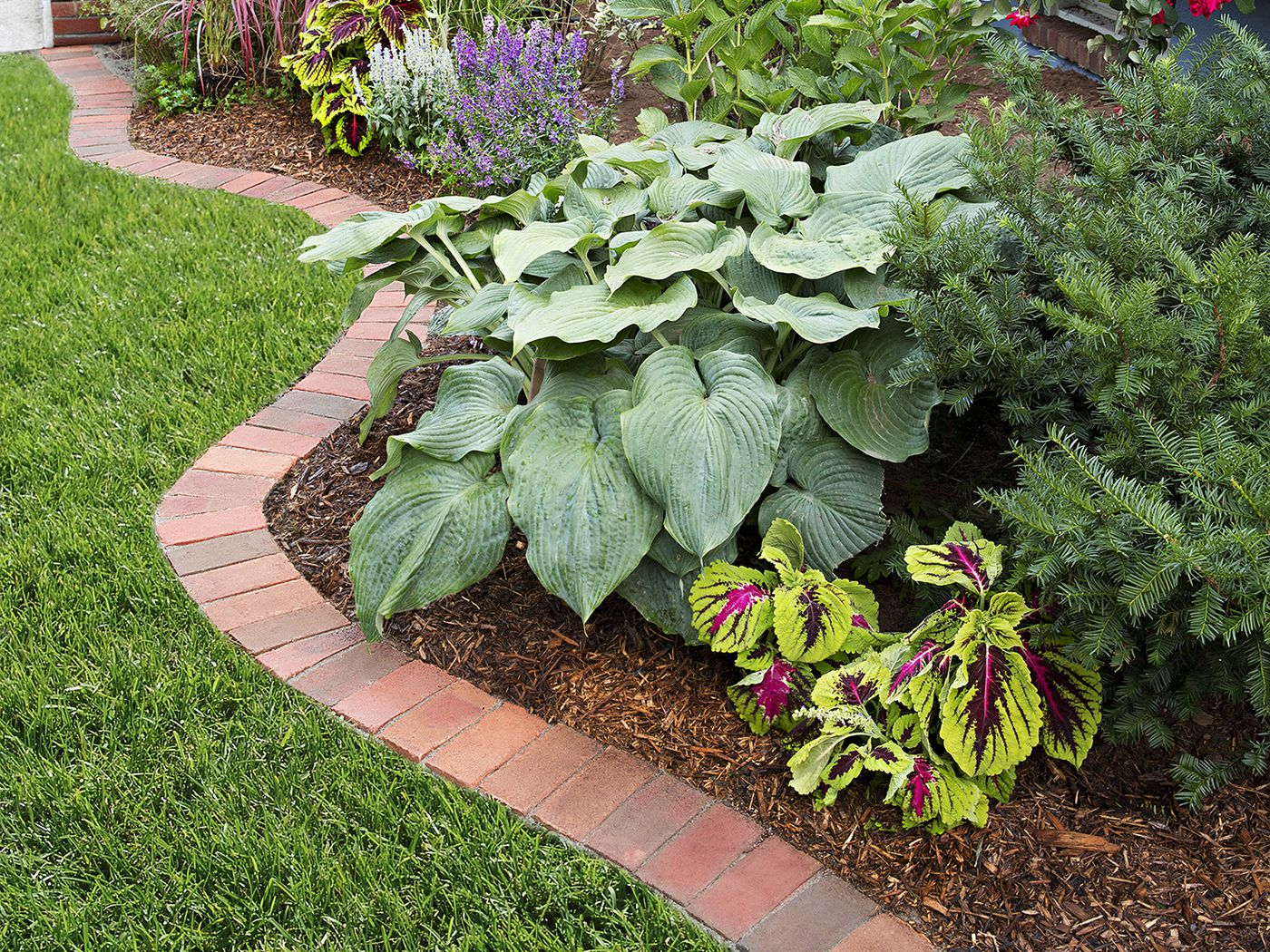Brick Edging Beautify Your Garden In 12 Steps This Old House