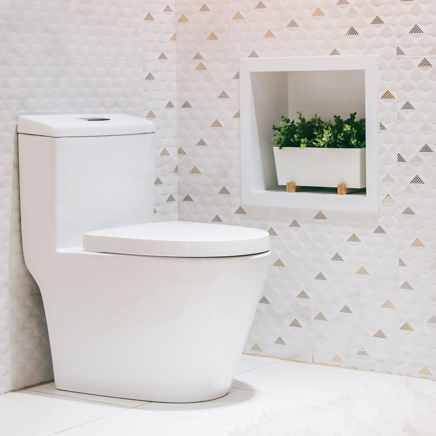 read this before you buy a toilet