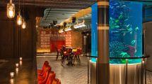 Newest Bar Nyc Clubstaurant King Giant Fish