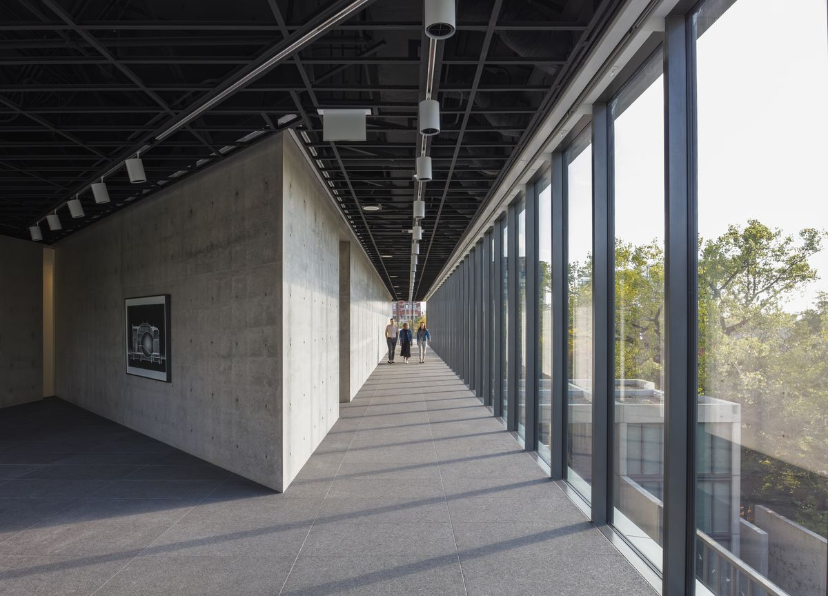 Tadao Andodesigned exhibition space opens in Lincoln Park