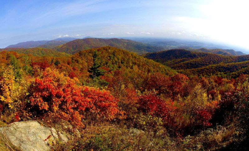Fall foliage in the mountains.