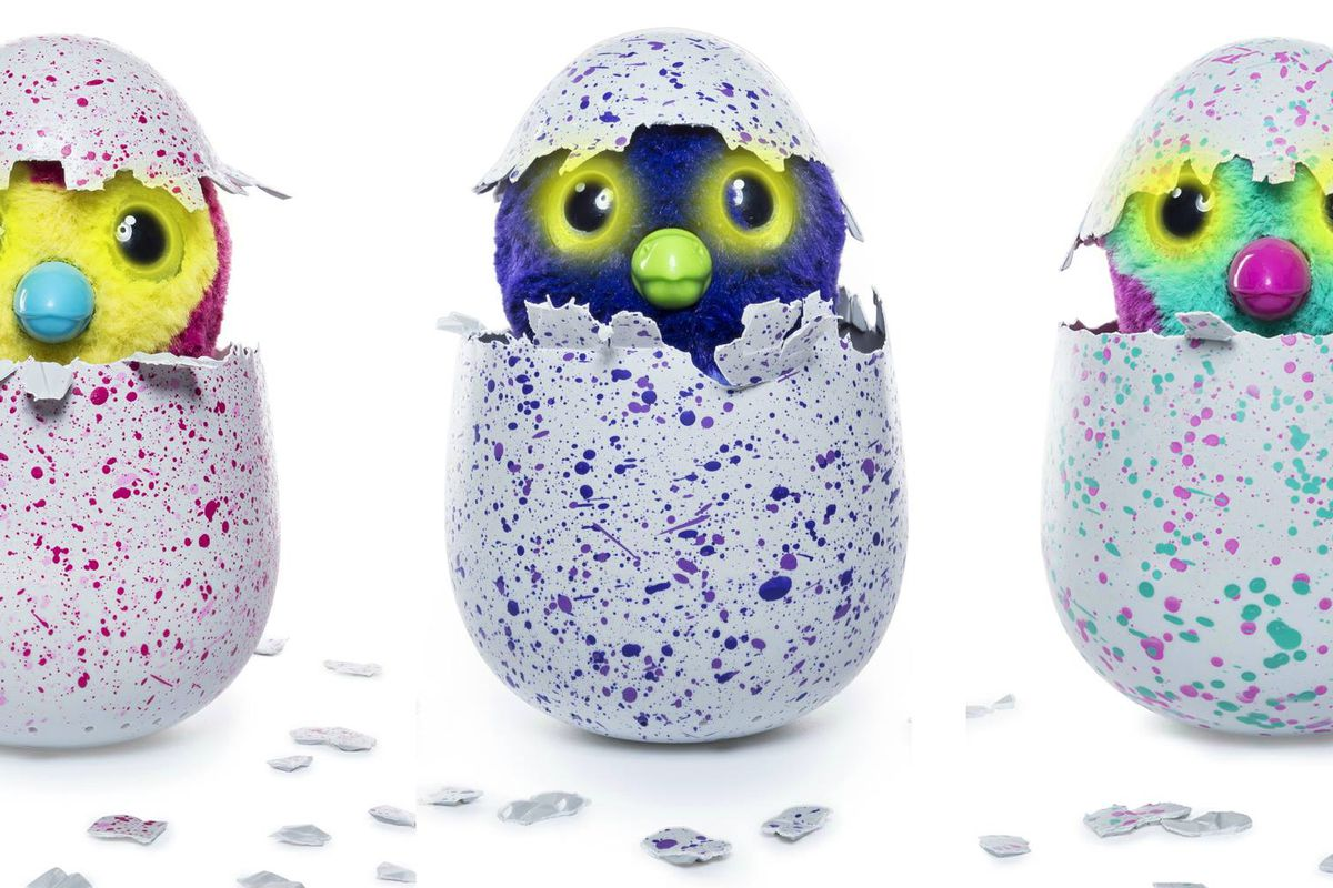 hatchimals everything you re