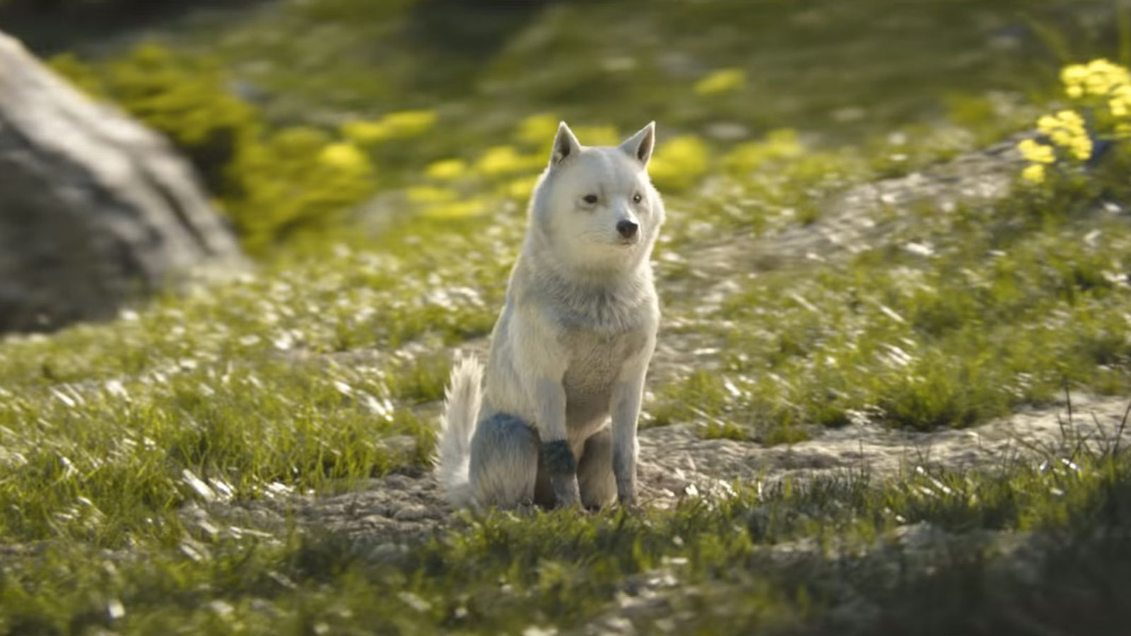 New Final Fantasy 15 Short Film Omen Has A Good Dog