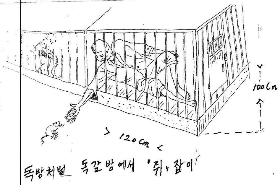 North Korea's gulag camps: a horror