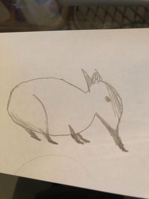 Polygon tries to draw Crash Bandicoot from memory 4