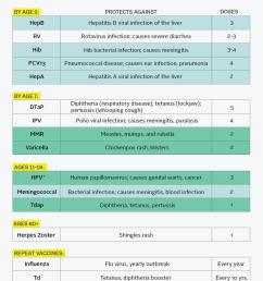 vaccine schedule [ 1200 x 1730 Pixel ]