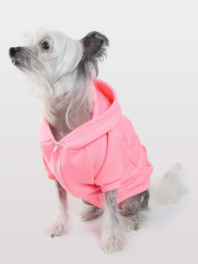 Dogs Getting Fleeced at American Apparel - Racked LA