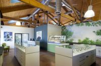 These 10 marijuana dispensaries break stereotypes with ...