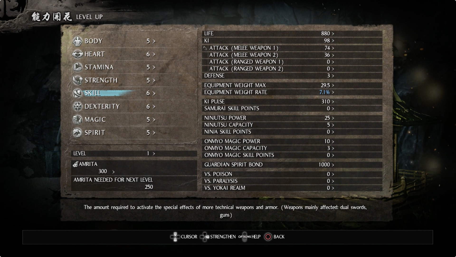 Leveling Screen Souls Dark