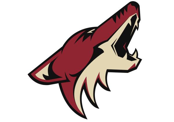 Easy to Draw NHL Team Logos