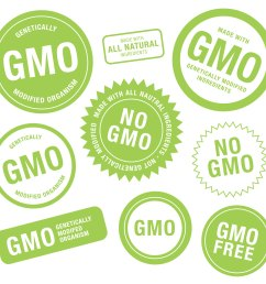 what s the debate over labeling gm foods  [ 3000 x 2778 Pixel ]