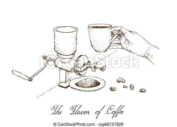 Hand drawn of manual coffee grinder with coffee. The