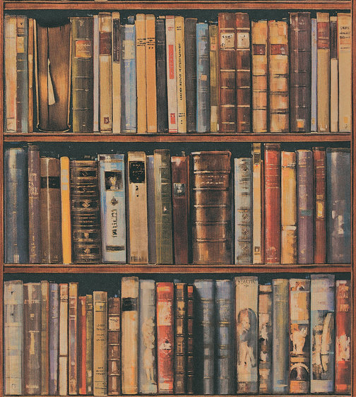 Library By Andrew Martin Multi Wallpaper Direct