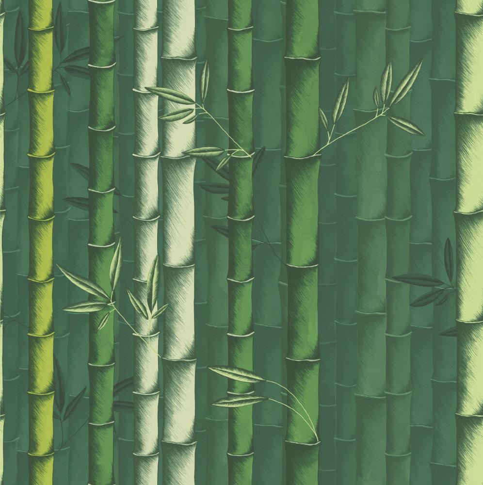 bamboo by osborne little