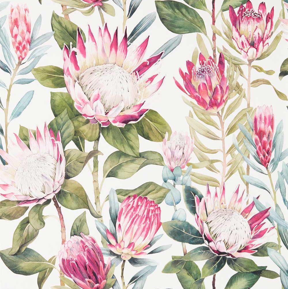 Busy Wallpaper Hd King Protea By Sanderson Rhodera Cream Wallpaper