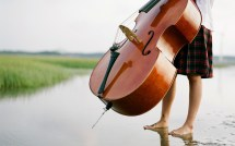 Cello Music Wallpaper
