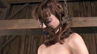 Hotty_in_latex_suit_gets_cunt_and_anal_prodding thumb
