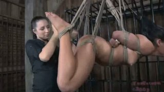 Latin chic tied_and hanged to the ceiling in hot BDSM sex video thumb