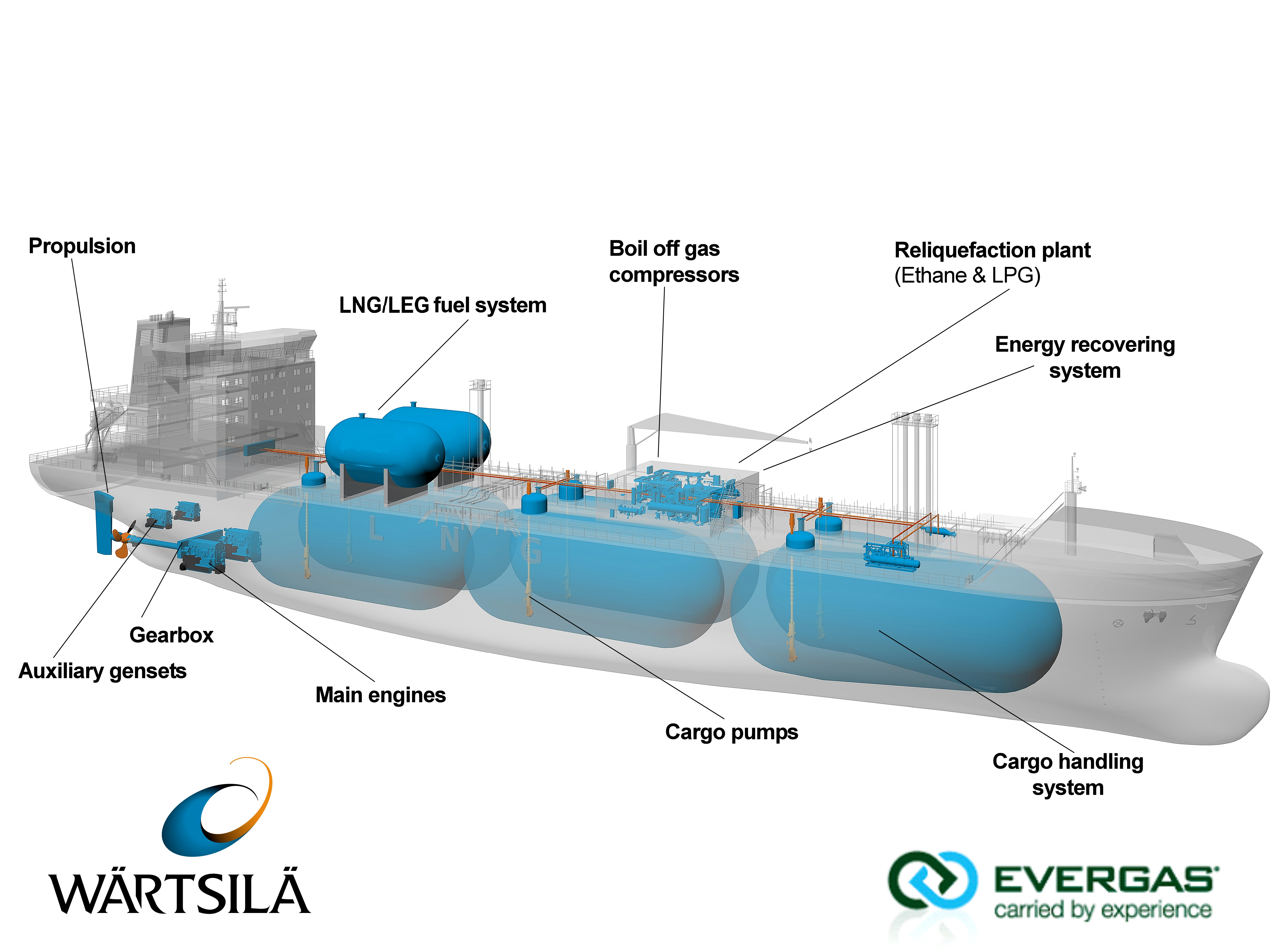 2 schematic of the evergas dragon series 27 500 cbm multi gas carrier [ 7000 x 5220 Pixel ]