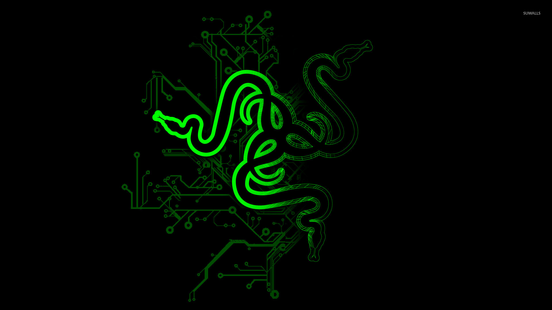 Breaking Down The Razer IPO Not For The Faint Hearted