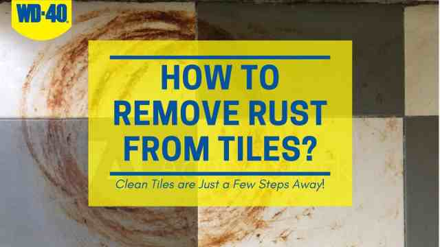HOW TO REMOVE RUST FROM TILES? - WD-24 Pakistan