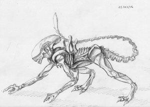 xenomorph drawing sketch easy weasyl getdrawings