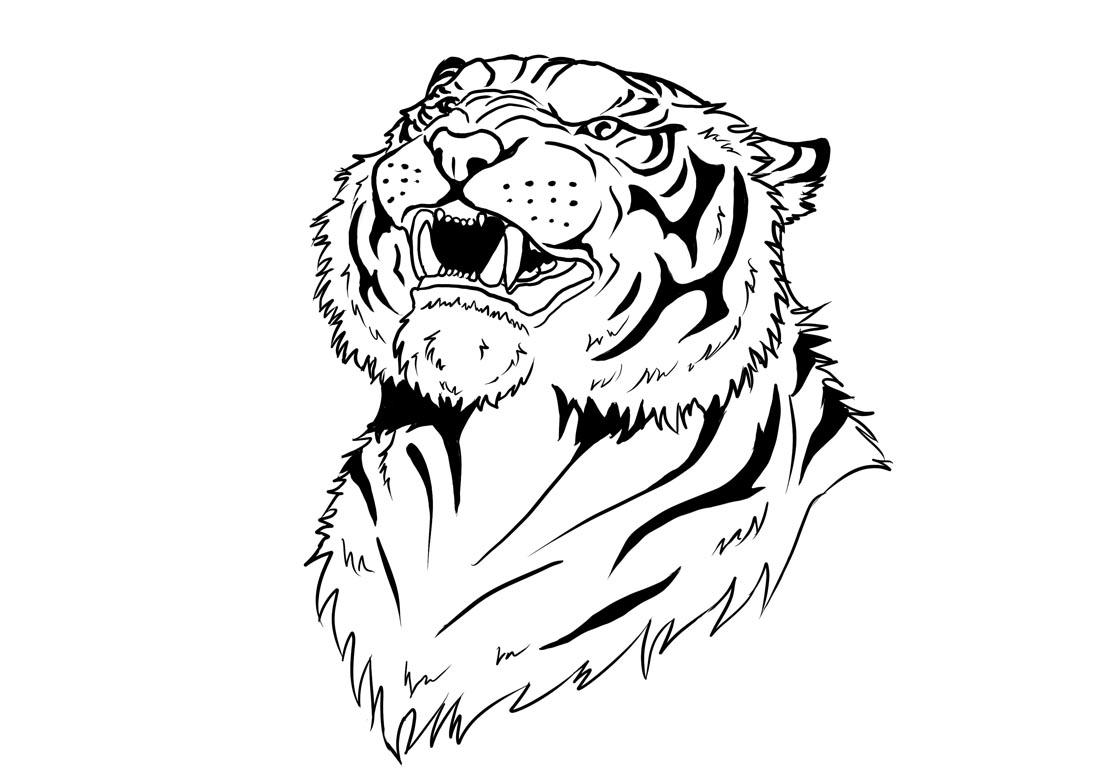 Angry Tiger Line Art