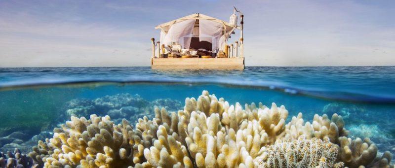 Vive como Dory con Airbnb, en la Gran Barrera de Coral australiana - airbnb-great-barrier-reef-800x341