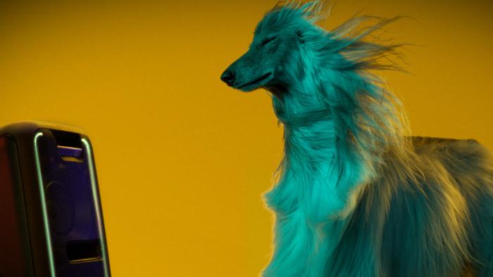Estudio revela que los perros prefieren a Beyoncé que a Beethoven - estudio-sony