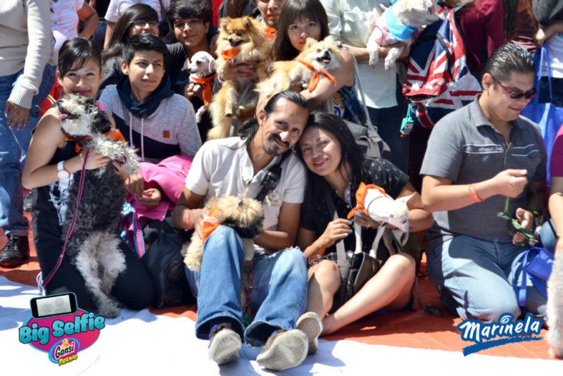 Big Selfie Marinela: evento de convívio entre la familia y sus mascota, culmina con éxito en su primera edición - big-selfie-marinela_2-800x534